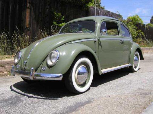 VW Beetle_1
